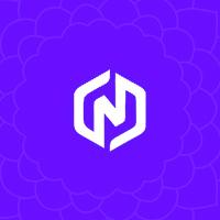 طراحی سایت نیو سانگ