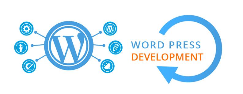 چه سایت هایی بیشتر با وردپرس نوشته می شود؟